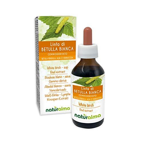 Abedul blanco (Betula pendula, amanecer o verrucosa) Extracto de brote sin alcohol de savia fresca naturalmente |  El extracto líquido cae 100 ml |  Complemento alimentario |  ...
