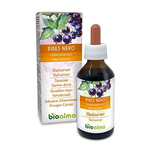 Grosella negra (Ribes nigrum) Extracto de brotes sin alcohol de brotes frescos naturalmente |  El extracto líquido cae 100 ml |  Complemento alimentario Vegano