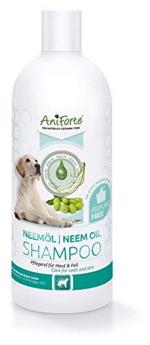 Champú AniForte con aceite de neem vegetal 500 ml champú sin fragancia para perros - producto para el cuidado de los perros a base de plantas, suave para la piel, curativo y ...