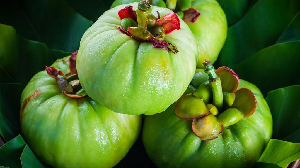 Garcinia Cambogia Diet Diente