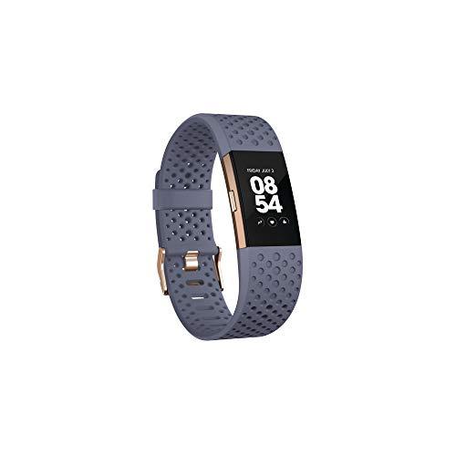 Fitbit FB407RGGYS-EU Pulsera de carga de 2 ritmos cardíacos y fitness - Gris azul