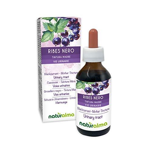 Hojas de grosella negra (Ribes nigrum) y frutos Tintura madre no alcohólica naturalmente |  El extracto líquido cae 100 ml |  Complemento alimentario Vegano