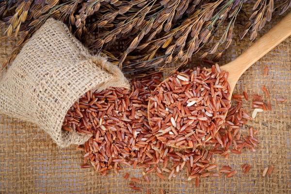 mejores suplementos de arroz rojo