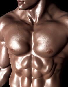 reconstruir la masa muscular rápida